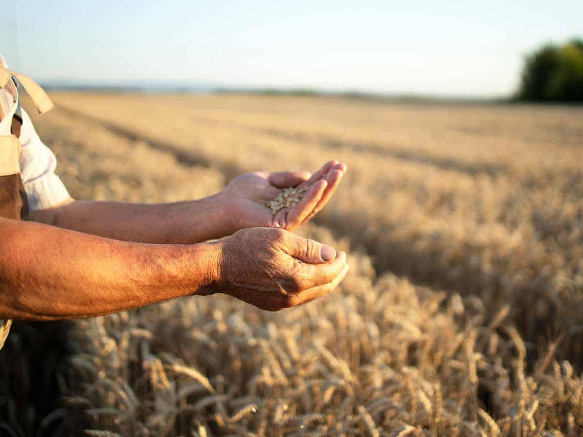 Rural Property Conveyancing